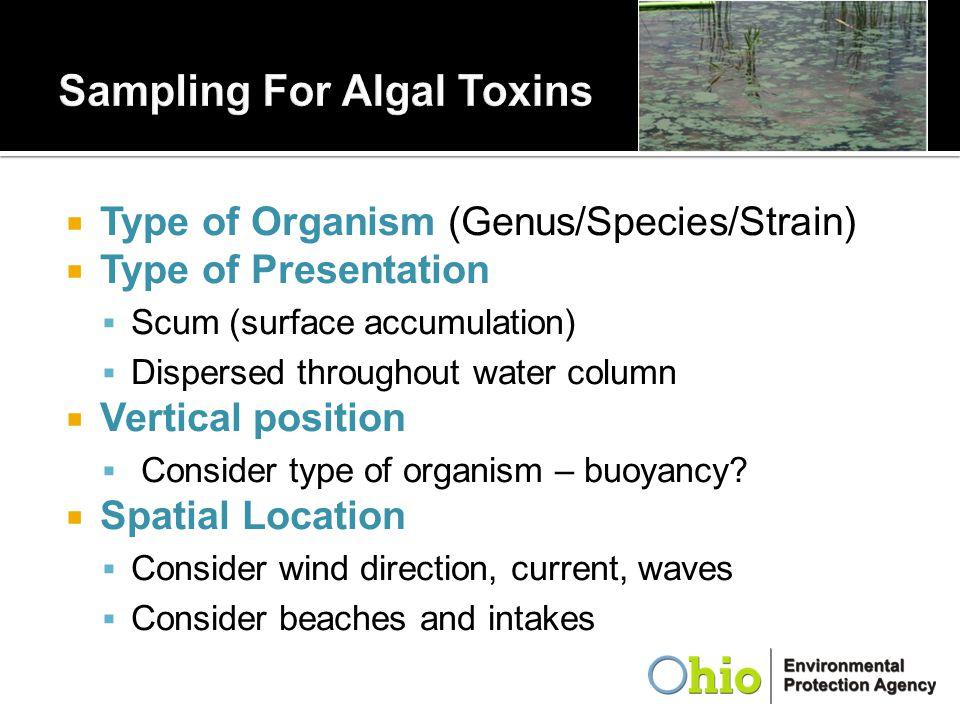  Type of Organism (Genus/Species/Strain)  Type of Presentation  Scum (surface accumulation)  Dispersed throughout water column  Vertical position