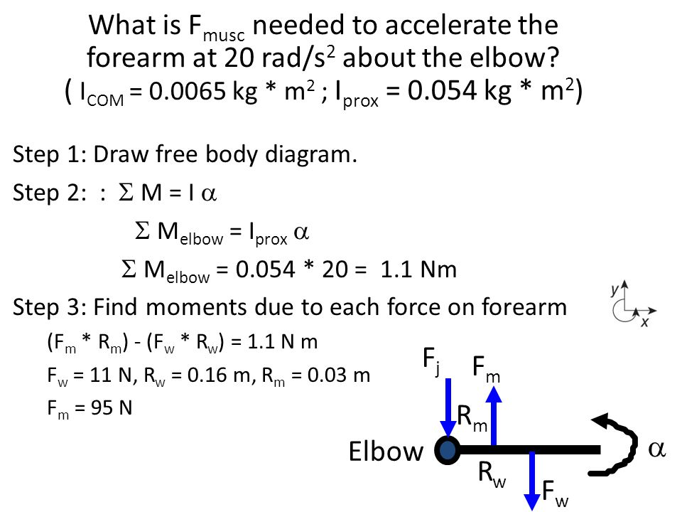 Step 1: Draw free body diagram. Step 2: :  M = I   M elbow = I prox   M elbow = 0.054 * 20 = 1.1 Nm Step 3: Find moments due to each force