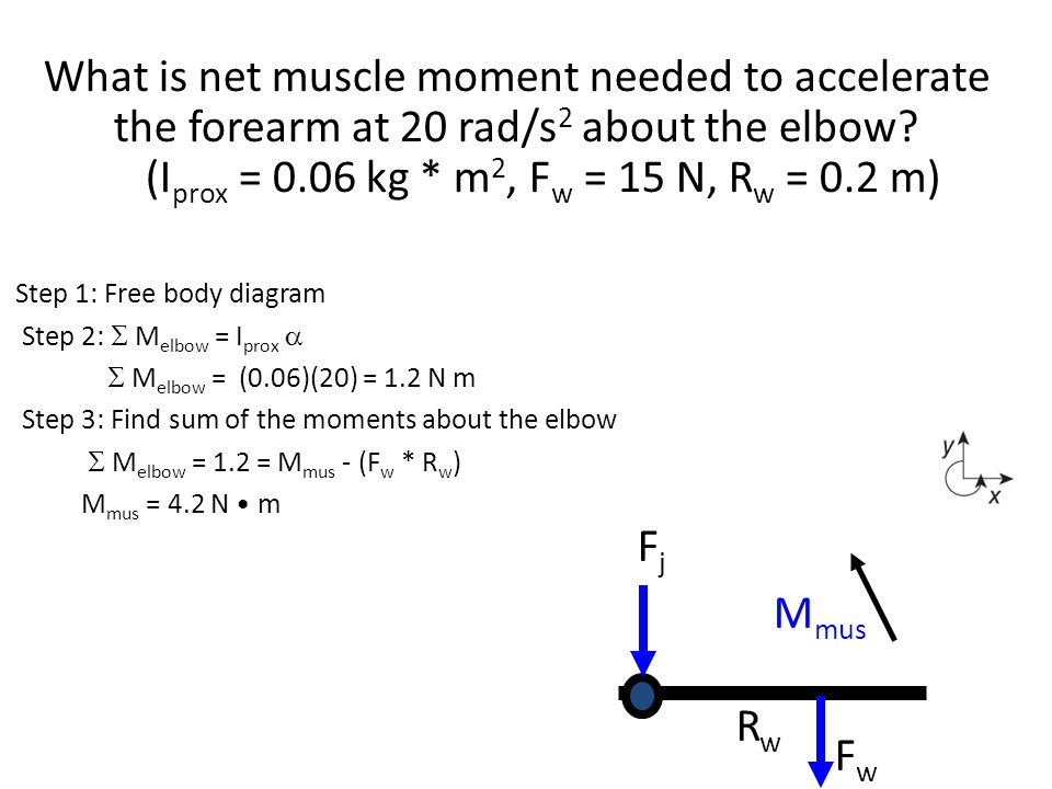 Step 1: Free body diagram Step 2:  M elbow = I prox   M elbow = (0.06)(20) = 1.2 N m Step 3: Find sum of the moments about the elbow  M elbow = 1