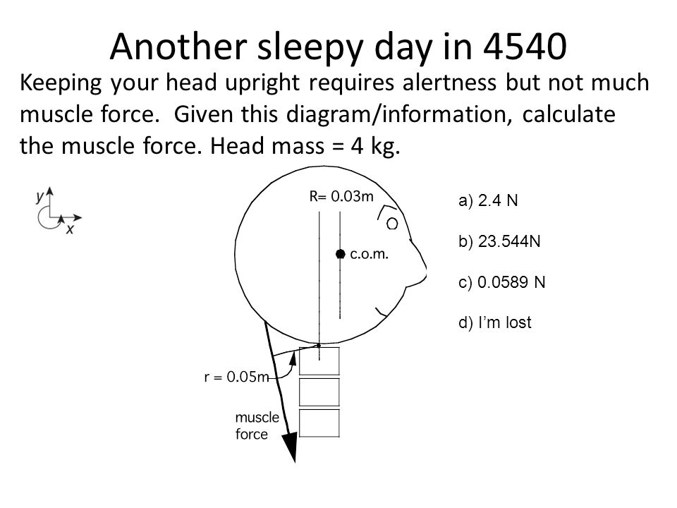 Another sleepy day in 4540 Keeping your head upright requires alertness but not much muscle force. Given this diagram/information, calculate the muscl