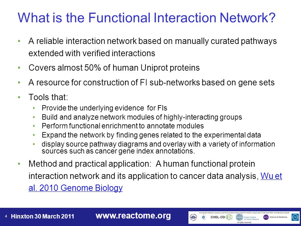 www.reactome.org Hinxton 30 March 2011 15 FI Network Analysis Pipeline Select gene list (mutated, over- expressed, down-regulated, amplified or deleted genes) Project genes of interest onto Reactome F.I.