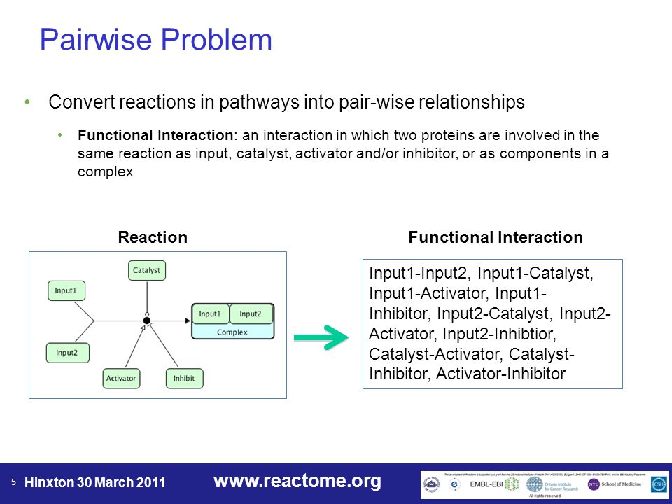 www.reactome.org Hinxton 30 March 2011 5 Pairwise Problem Input1-Input2, Input1-Catalyst, Input1-Activator, Input1- Inhibitor, Input2-Catalyst, Input2- Activator, Input2-Inhibtior, Catalyst-Activator, Catalyst- Inhibitor, Activator-Inhibitor Reaction Functional Interaction Convert reactions in pathways into pair-wise relationships Functional Interaction: an interaction in which two proteins are involved in the same reaction as input, catalyst, activator and/or inhibitor, or as components in a complex