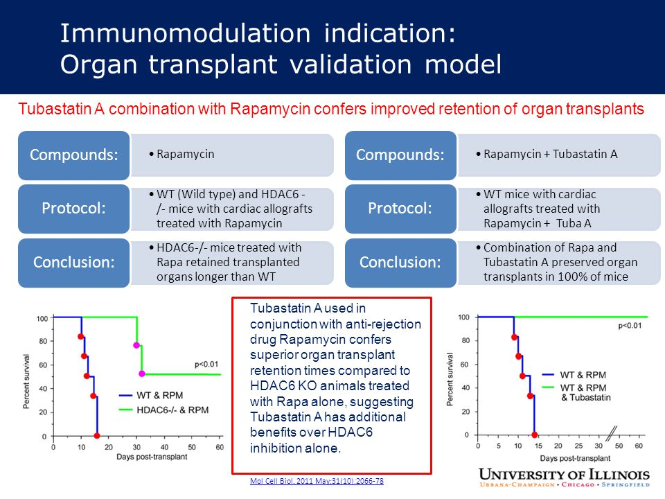Immunomodulation indication: Organ transplant validation model Tubastatin A combination with Rapamycin confers improved retention of organ transplants