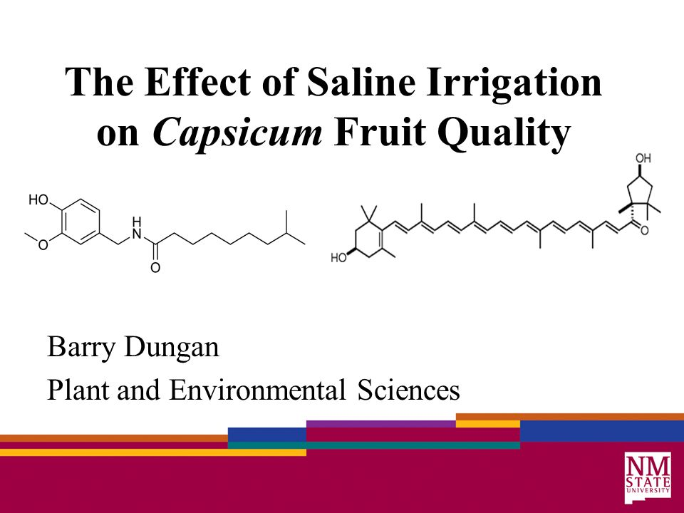 The Effect of Saline Irrigation on Capsicum Fruit Quality Barry Dungan Plant and Environmental Sciences