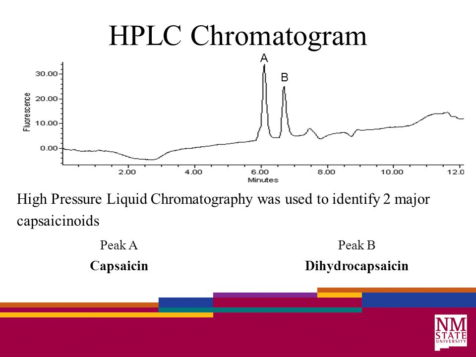 HPLC Chromatogram High Pressure Liquid Chromatography was used to identify 2 major capsaicinoids Peak APeak B CapsaicinDihydrocapsaicin B A