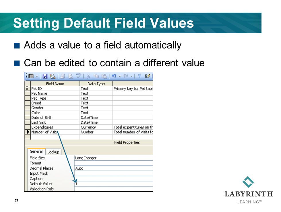 Setting Default Field Values Adds a value to a field automatically Can be edited to contain a different value 27