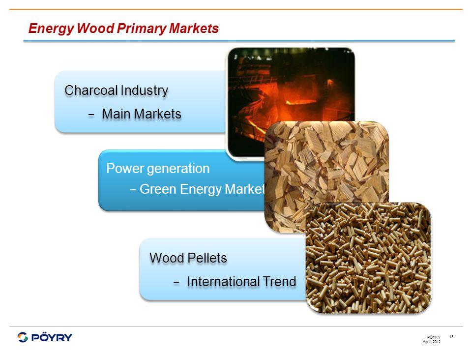 April, 2012 PÖYRY 18 Power generation − Green Energy Market Power generation − Green Energy Market Charcoal Industry − Main Markets Charcoal Industry