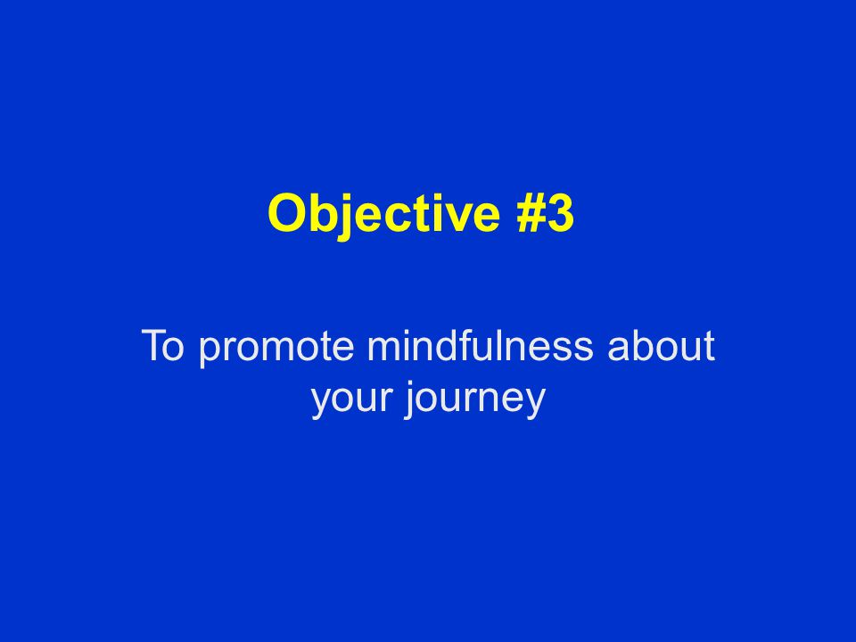 Objective #3 To promote mindfulness about your journey