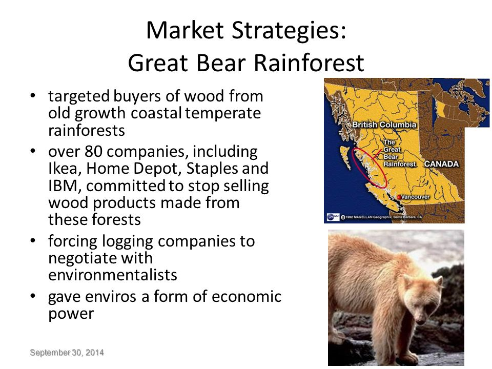 Market Strategies: Great Bear Rainforest targeted buyers of wood from old growth coastal temperate rainforests over 80 companies, including Ikea, Home