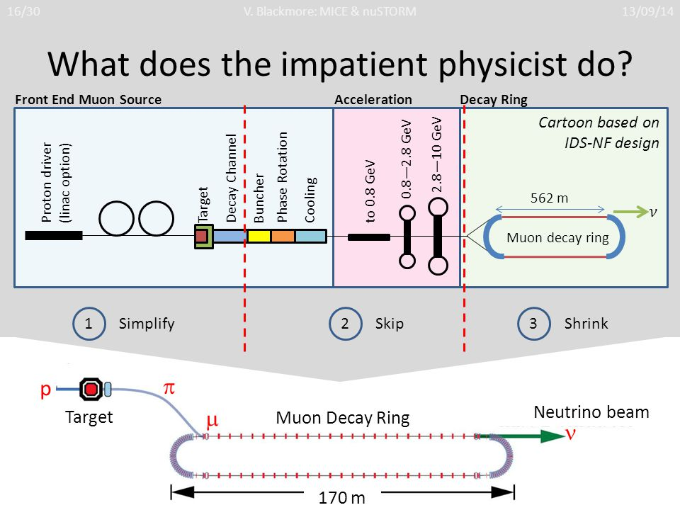 p  170 m Muon Decay Ring Neutrino beam Target  What does the impatient physicist do.