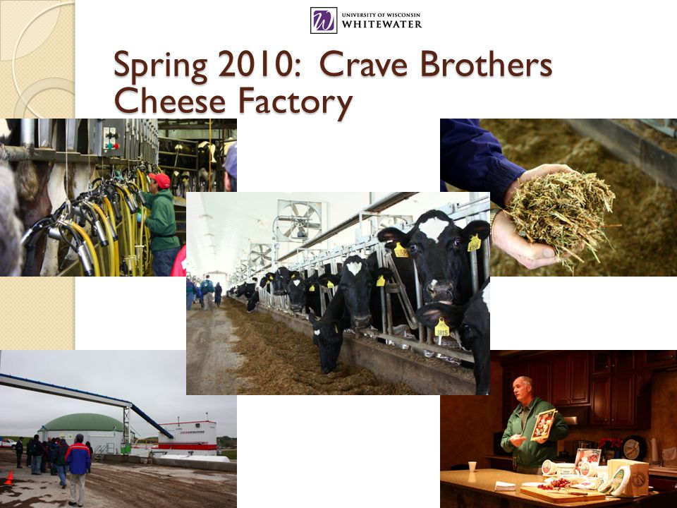 Spring 2010: Crave Brothers Cheese Factory