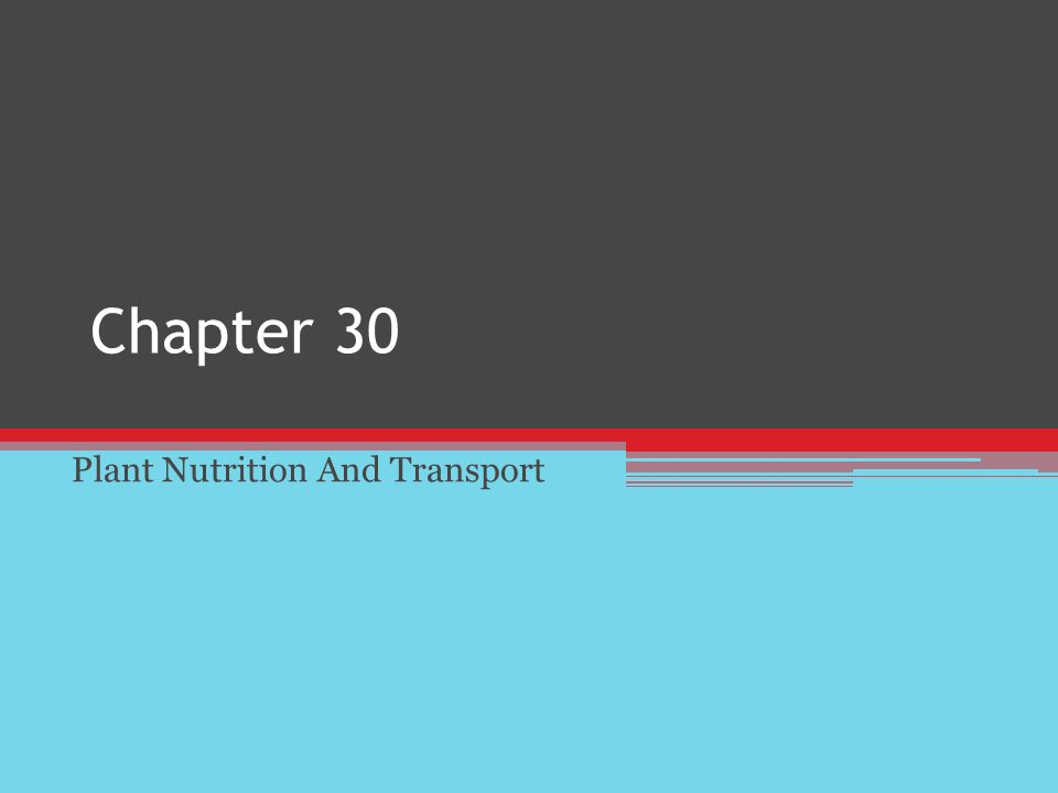 Chapter 30 Plant Nutrition And Transport