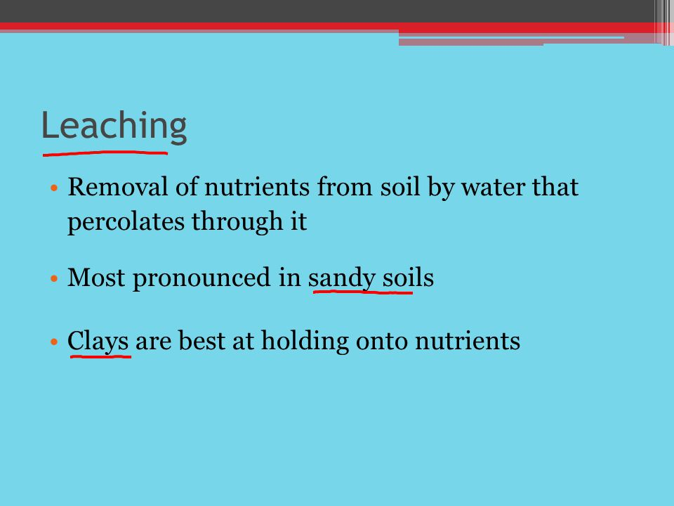 Leaching Removal of nutrients from soil by water that percolates through it Most pronounced in sandy soils Clays are best at holding onto nutrients