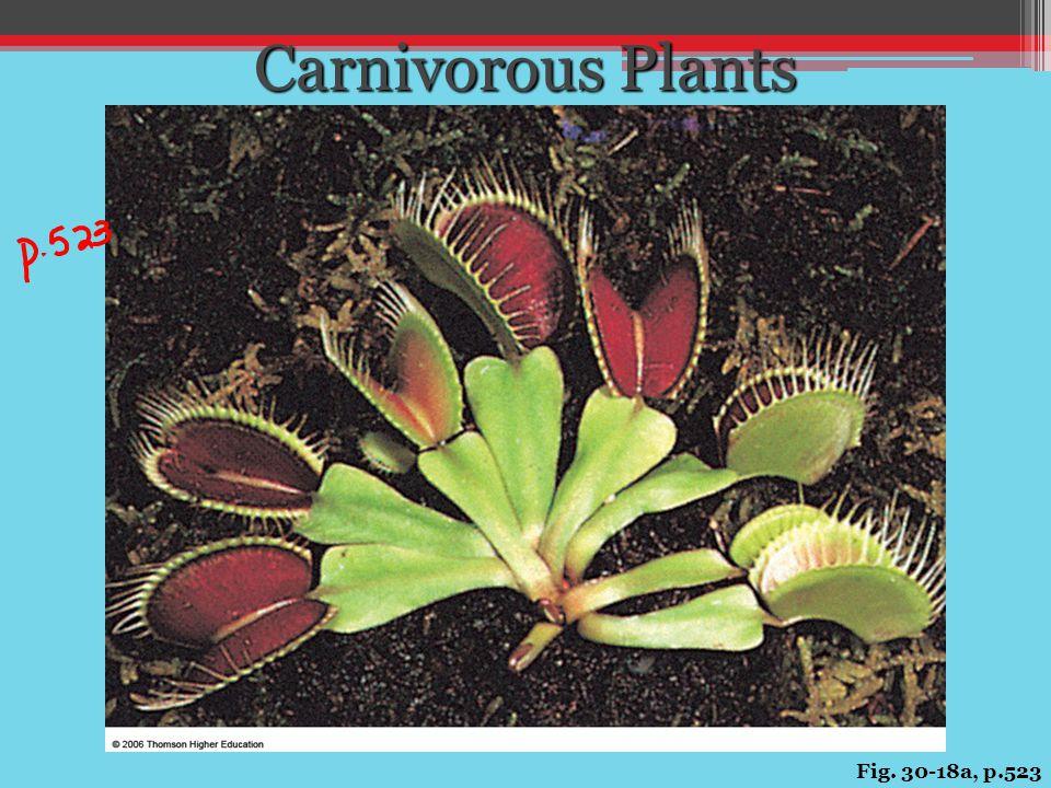 Fig. 30-18a, p.523 Carnivorous Plants