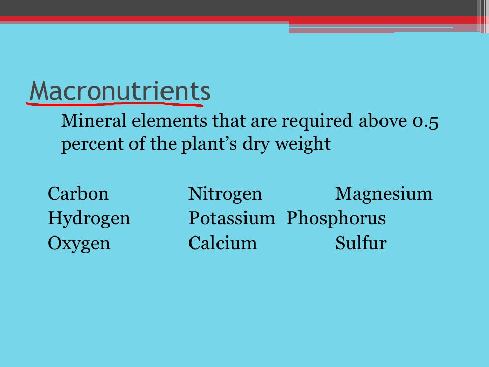 Macronutrients Mineral elements that are required above 0.5 percent of the plant's dry weight CarbonNitrogenMagnesium HydrogenPotassiumPhosphorus Oxyg