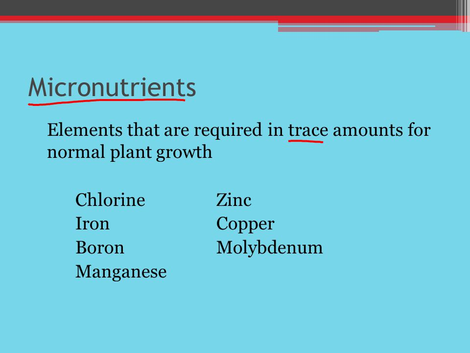 Micronutrients Elements that are required in trace amounts for normal plant growth ChlorineZinc IronCopper BoronMolybdenum Manganese