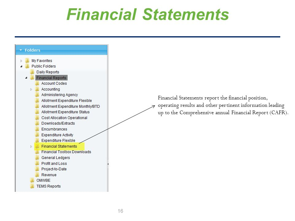 Financial Statements Financial Statements report the financial position, operating results and other pertinent information leading up to the Comprehensive annual Financial Report (CAFR).