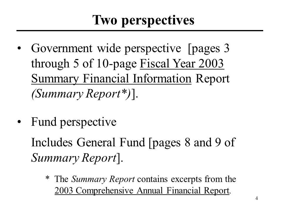 4 Two perspectives Government wide perspective [pages 3 through 5 of 10-page Fiscal Year 2003 Summary Financial Information Report (Summary Report*)].