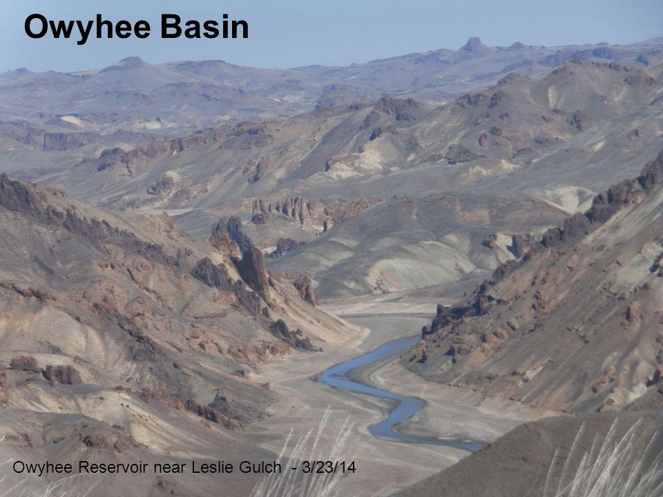 Owyhee Basin Owyhee Reservoir near Leslie Gulch - 3/23/14