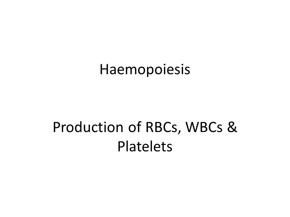 Haemopoiesis Production of RBCs, WBCs & Platelets
