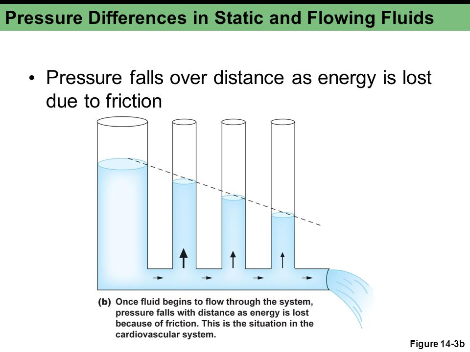 Pressure Differences in Static and Flowing Fluids Pressure falls over distance as energy is lost due to friction Figure 14-3b