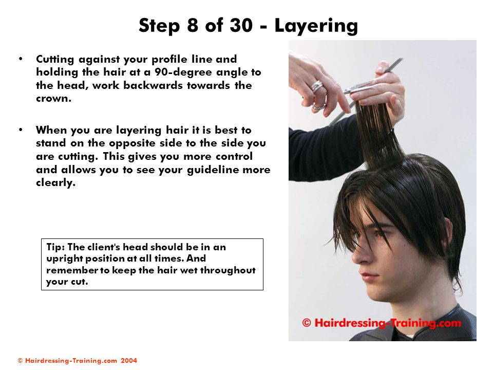 © Hairdressing-Training.com 2004 Step 8 of 30 - Layering Cutting against your profile line and holding the hair at a 90-degree angle to the head, work