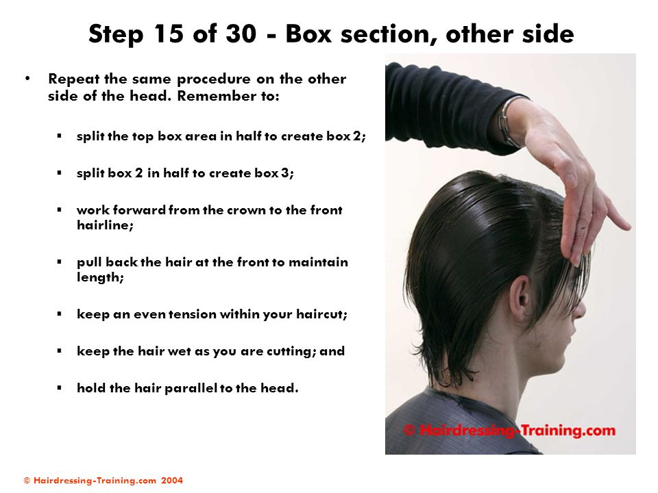 © Hairdressing-Training.com 2004 Step 15 of 30 - Box section, other side Repeat the same procedure on the other side of the head. Remember to:  split
