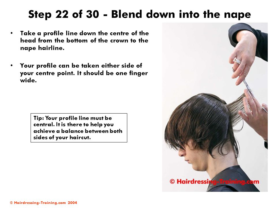 © Hairdressing-Training.com 2004 Step 22 of 30 - Blend down into the nape Take a profile line down the centre of the head from the bottom of the crown