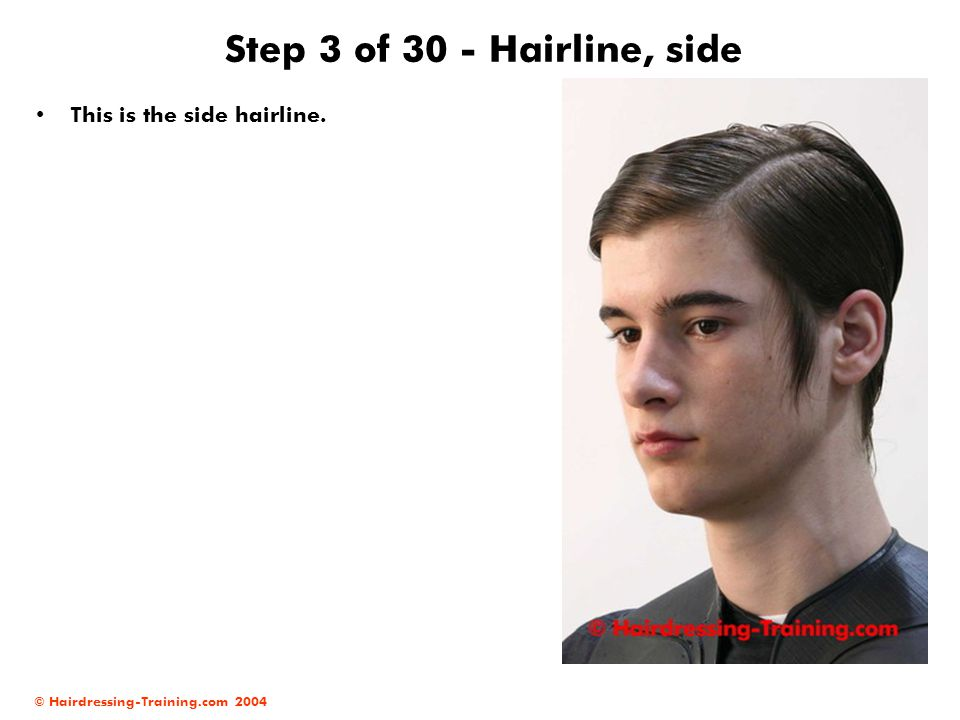 © Hairdressing-Training.com 2004 Step 3 of 30 - Hairline, side This is the side hairline.