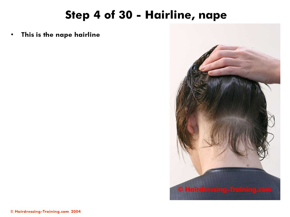 © Hairdressing-Training.com 2004 Step 4 of 30 - Hairline, nape This is the nape hairline