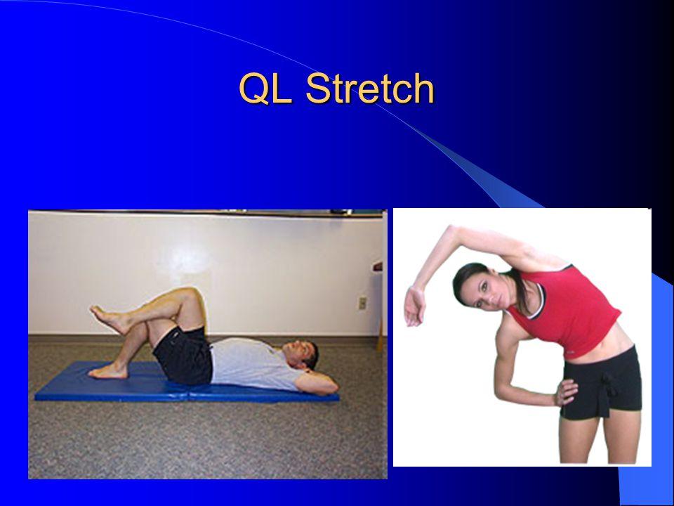 QL Stretch
