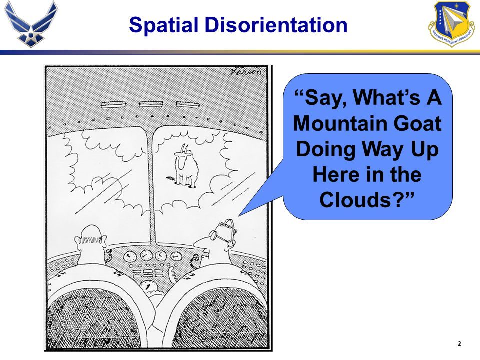 2 Say, What's A Mountain Goat Doing Way Up Here in the Clouds? Spatial Disorientation