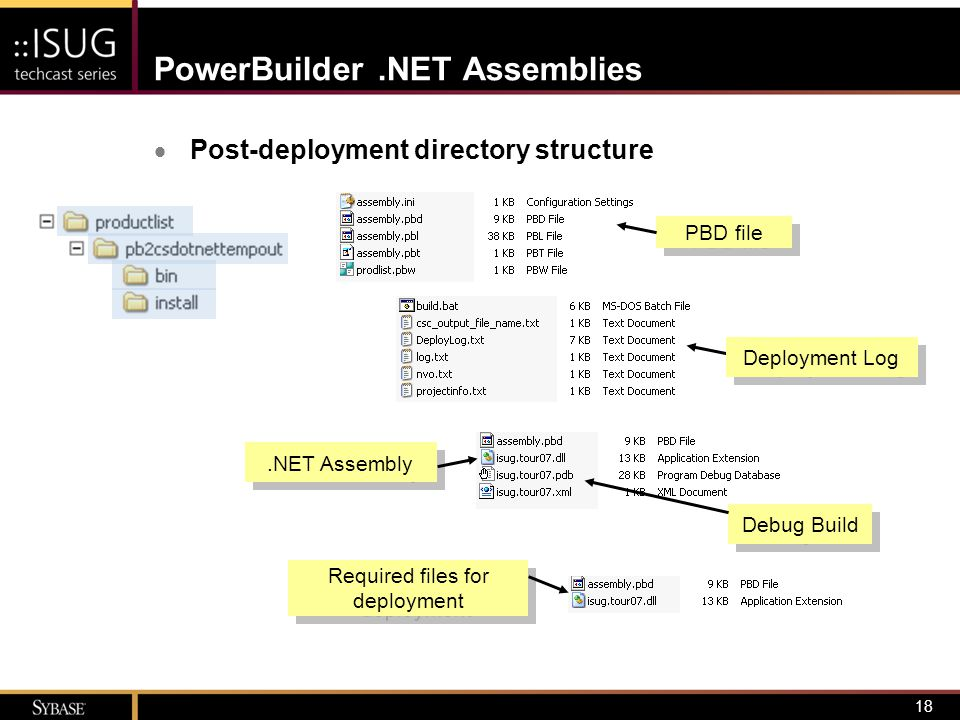 18 PowerBuilder.NET Assemblies  Post-deployment directory structure PBD file.NET Assembly Debug Build Required files for deployment Required files fo