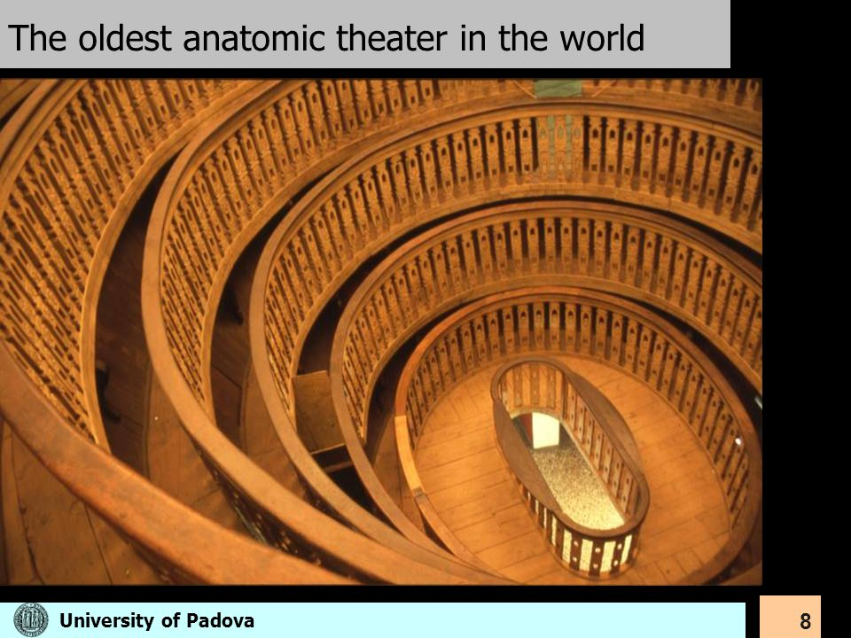 8 The oldest anatomic theater in the world University of Padova