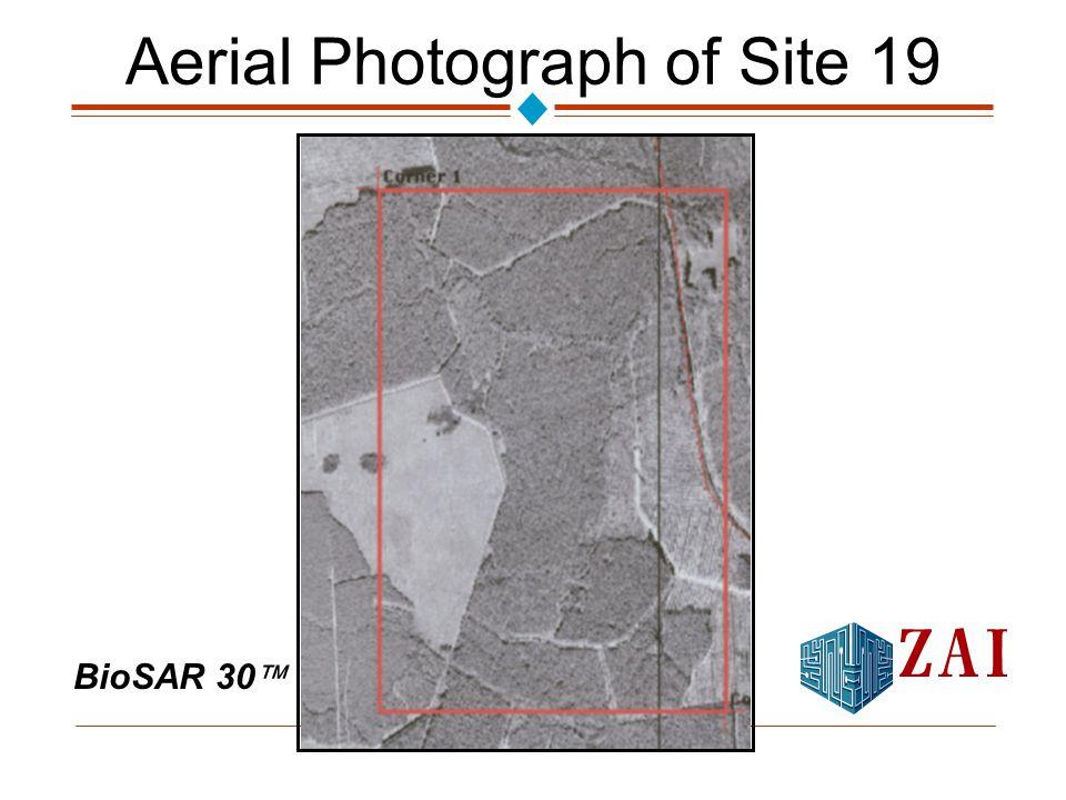 BioSAR 30  Aerial Photograph of Site 19