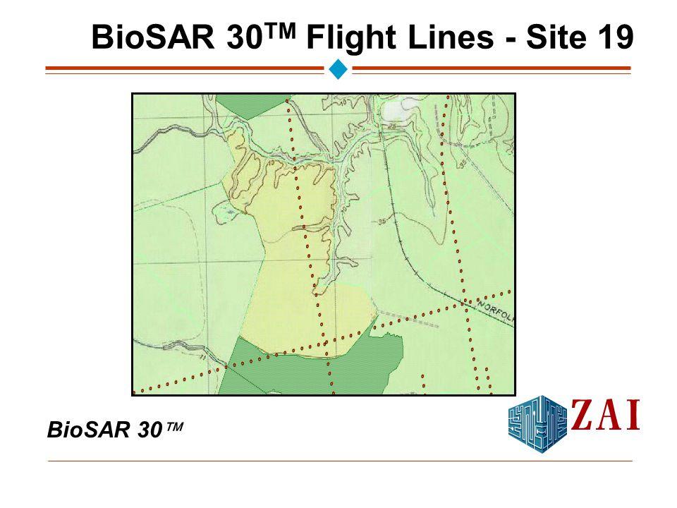 BioSAR 30  BioSAR 30 TM Flight Lines - Site 19