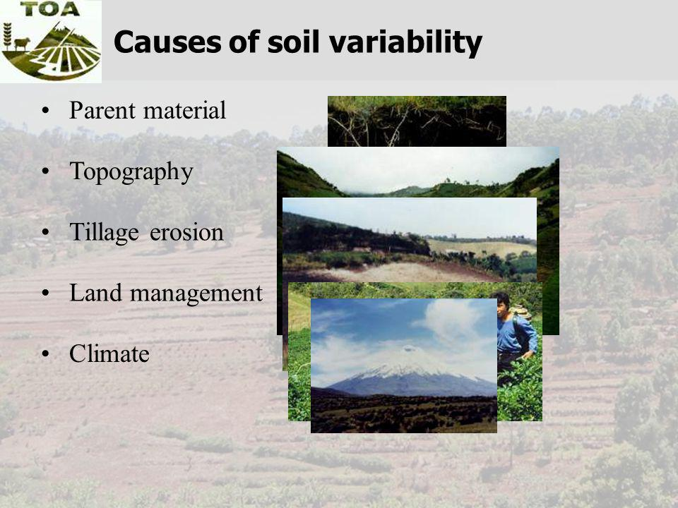 Parent material Topography Tillage erosion Land management Climate Causes of soil variability