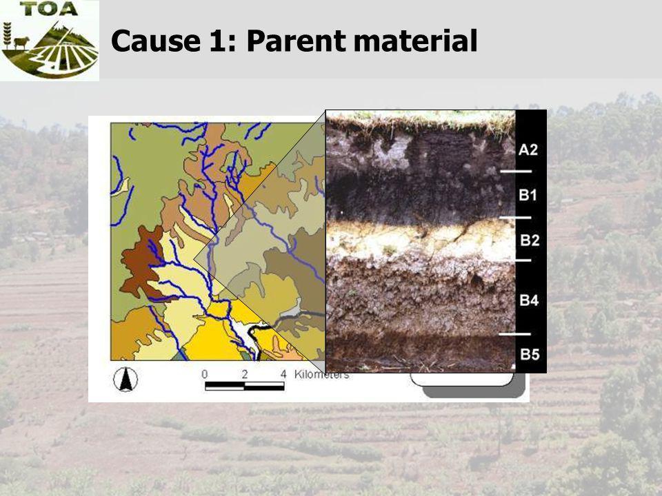 Cause 1: Parent material