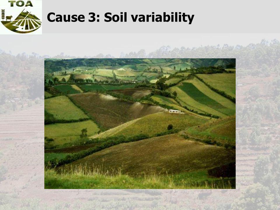 Cause 3: Soil variability