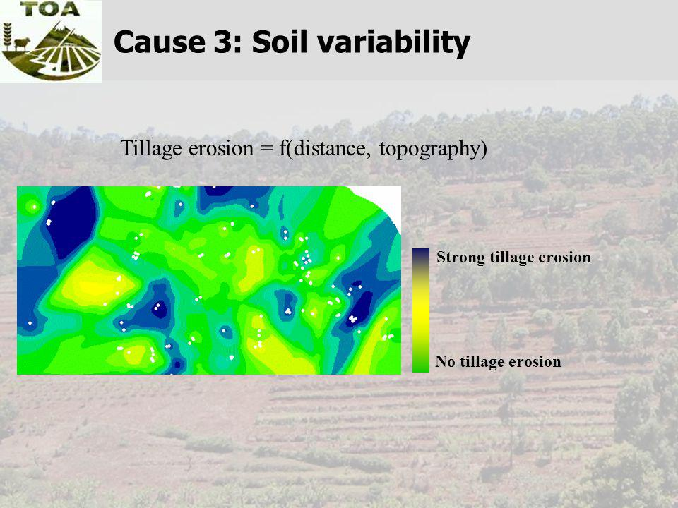 Tillage erosion = f(distance, topography) No tillage erosion Strong tillage erosion Cause 3: Soil variability