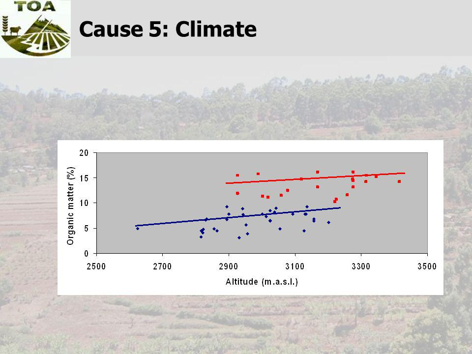 Cause 5: Climate