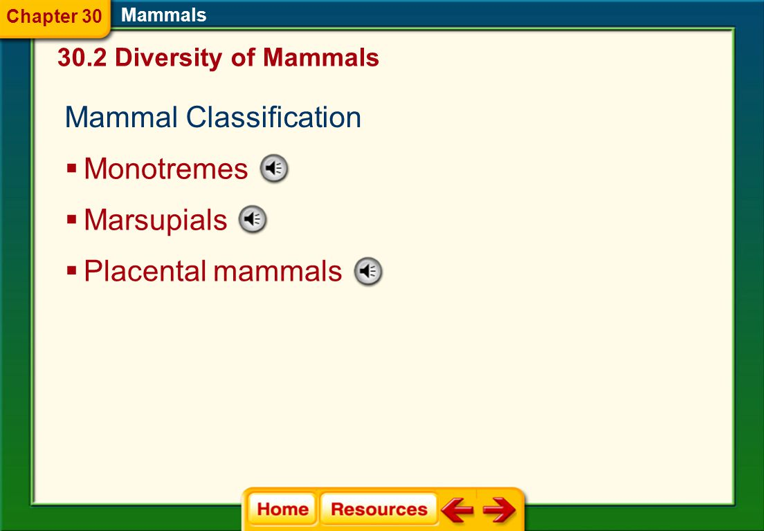 Reproduction  In mammals, the egg is fertilized internally. Mammals  Development of the embryo takes place in the female uterus. Movement  Mammals