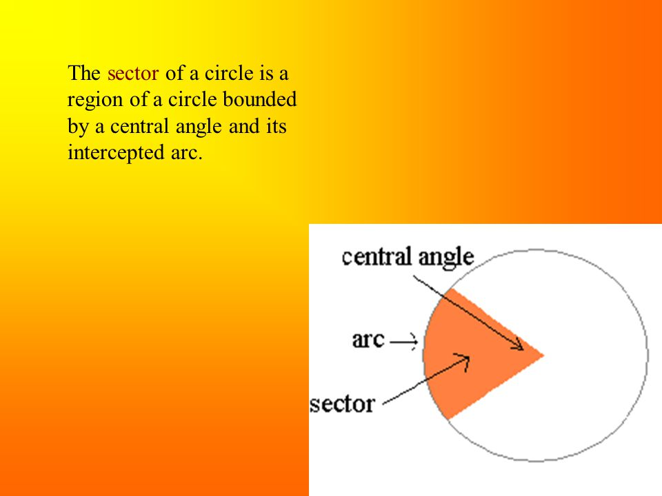 The sector of a circle is a region of a circle bounded by a central angle and its intercepted arc.