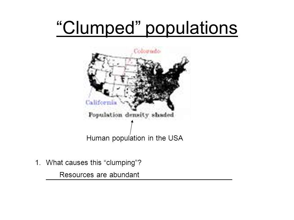 """Clumped"" populations Human population in the USA 1.What causes this ""clumping""? ______________________________________________ Resources are abundant"