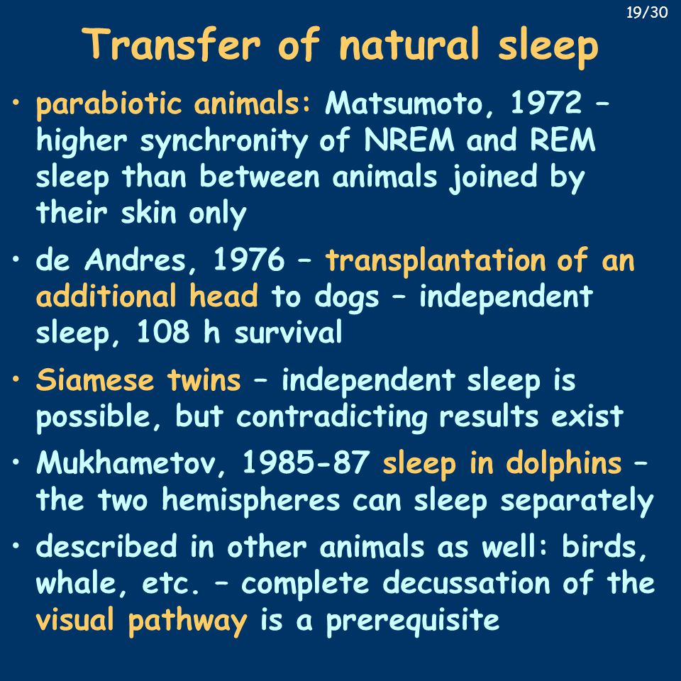Transfer of natural sleep parabiotic animals: Matsumoto, 1972 – higher synchronity of NREM and REM sleep than between animals joined by their skin only de Andres, 1976 – transplantation of an additional head to dogs – independent sleep, 108 h survival Siamese twins – independent sleep is possible, but contradicting results exist Mukhametov, 1985-87 sleep in dolphins – the two hemispheres can sleep separately described in other animals as well: birds, whale, etc.