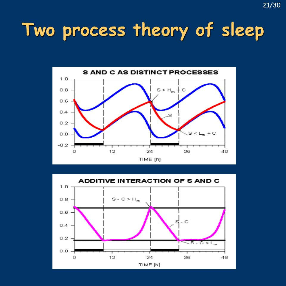 Two process theory of sleep 21/30