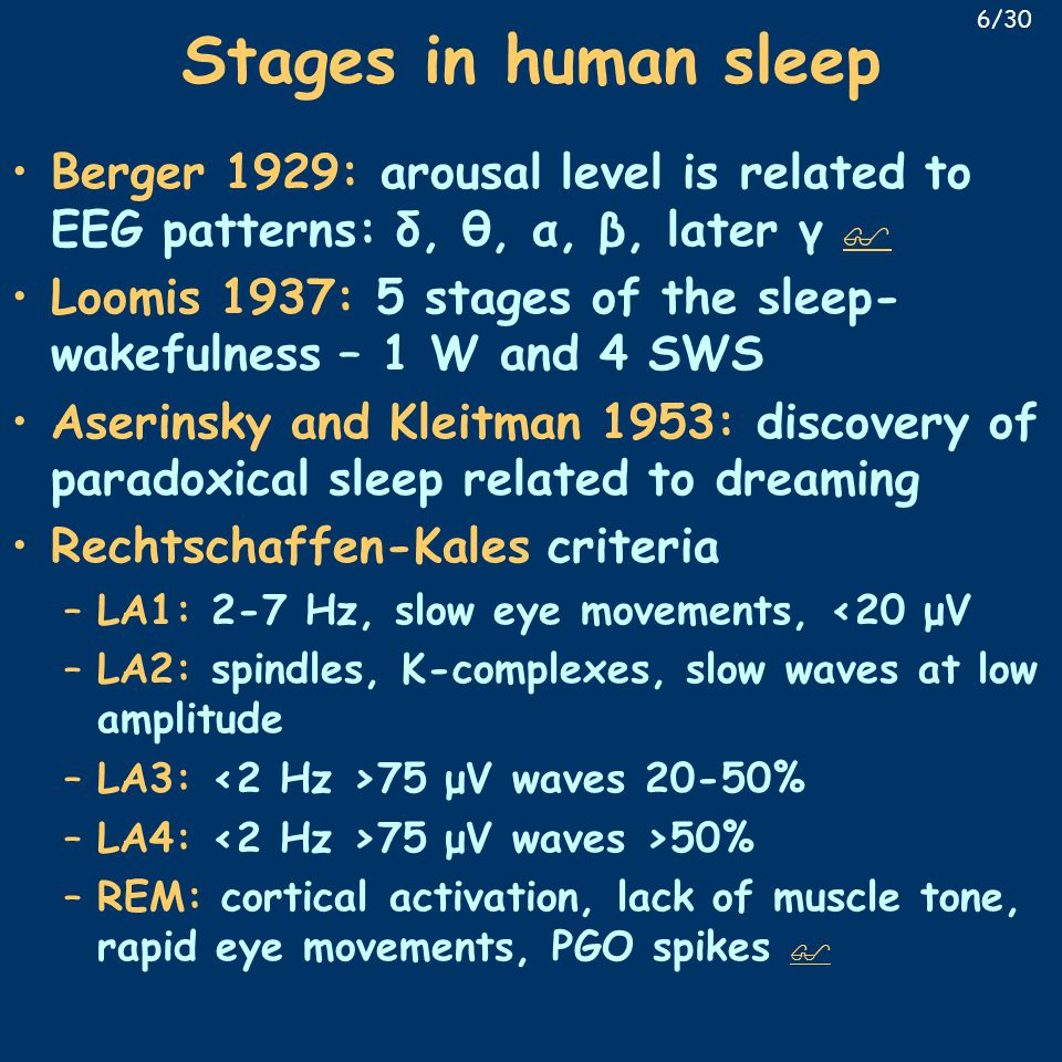 Stages in human sleep Berger 1929: arousal level is related to EEG patterns: δ, θ, α, β, later γ   Loomis 1937: 5 stages of the sleep- wakefulness – 1 W and 4 SWS Aserinsky and Kleitman 1953: discovery of paradoxical sleep related to dreaming Rechtschaffen-Kales criteria –LA1: 2-7 Hz, slow eye movements, <20 μV –LA2: spindles, K-complexes, slow waves at low amplitude –LA3: 75 μV waves 20-50% –LA4: 75 μV waves >50% –REM: cortical activation, lack of muscle tone, rapid eye movements, PGO spikes   6/30
