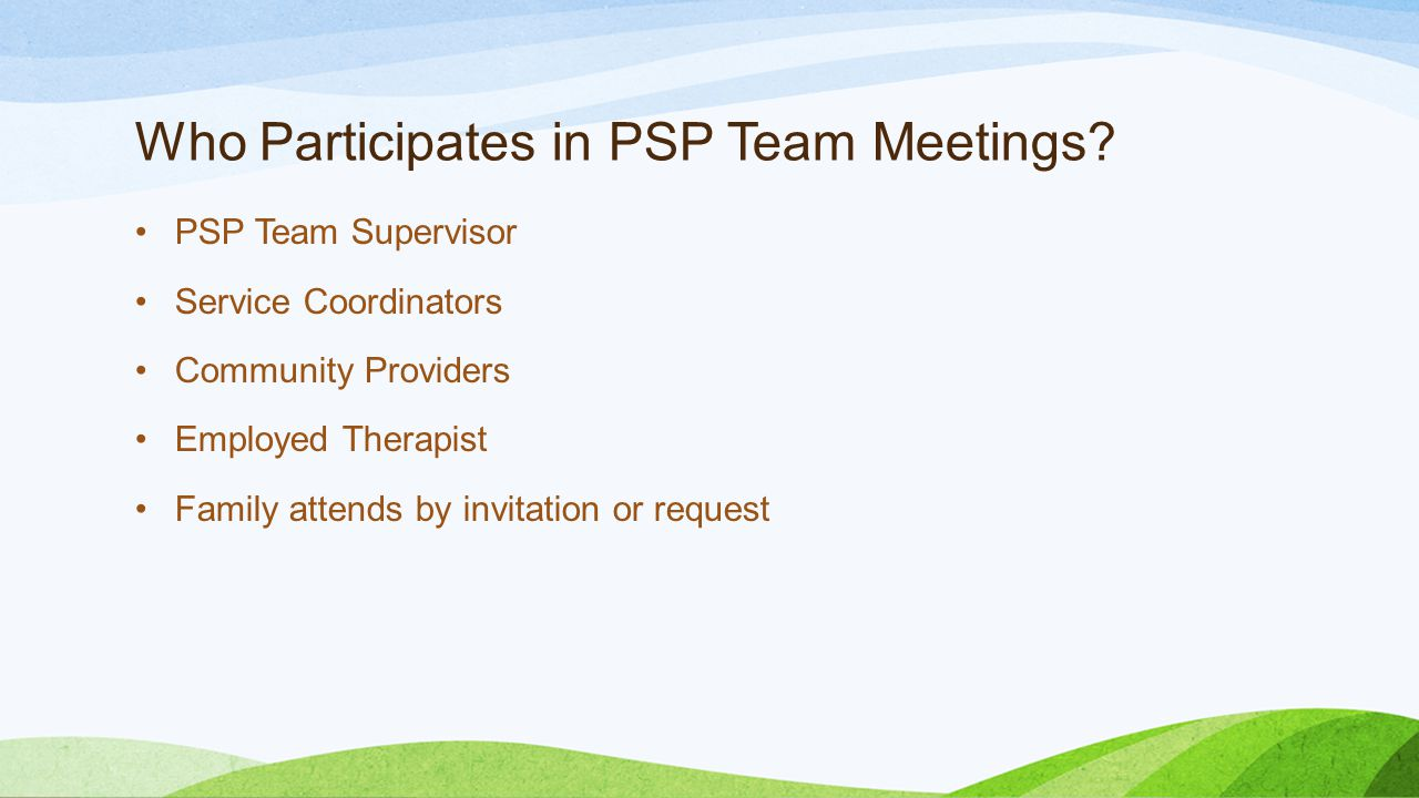 Who Participates in PSP Team Meetings.