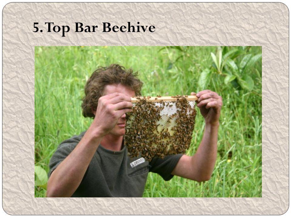 5. Top Bar Beehive
