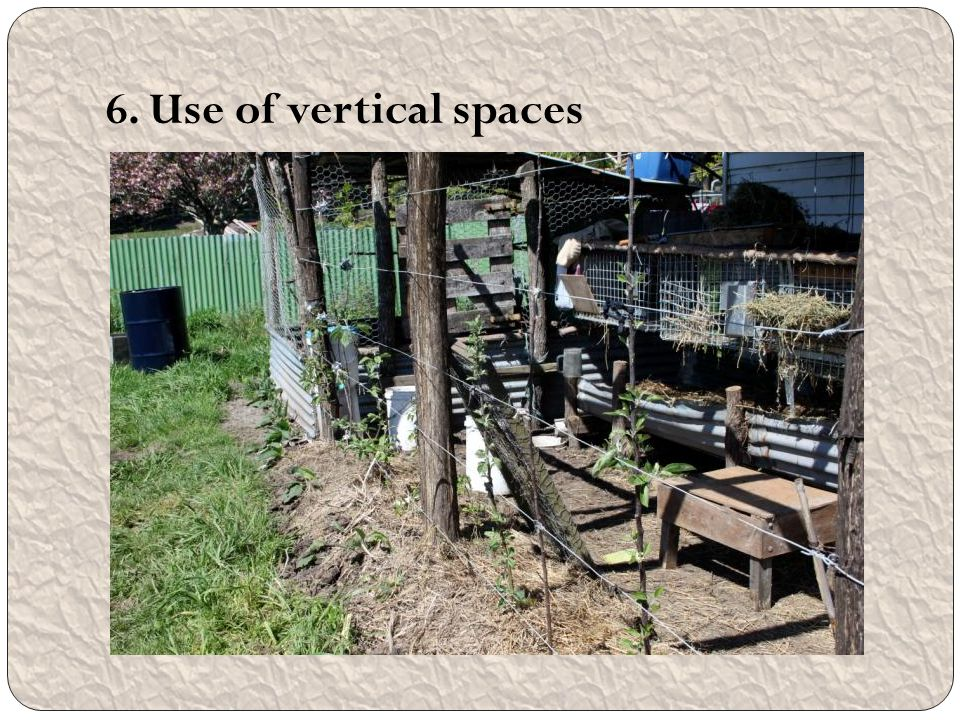 6. Use of vertical spaces